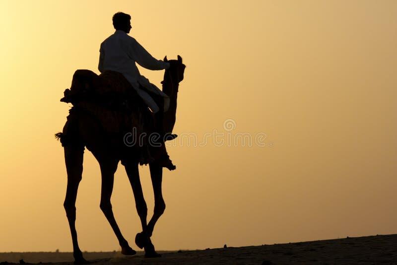 jeździec wielbłądzia sylwetka obraz stock