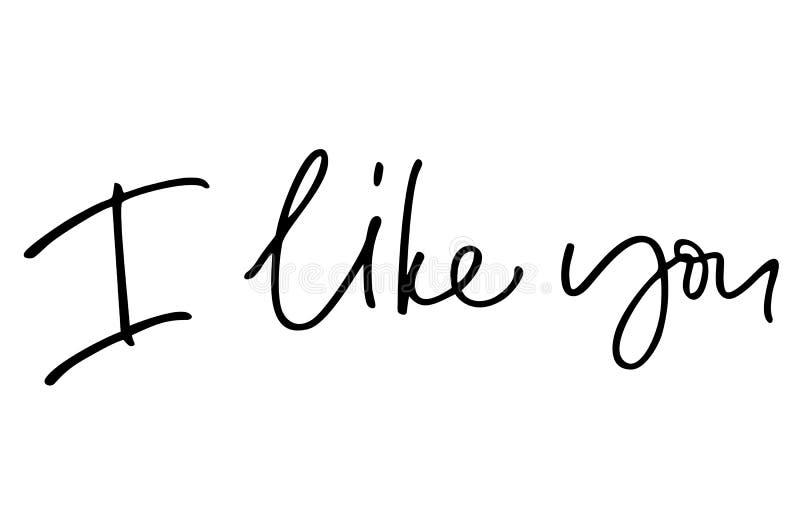 Je vous aime Texte manuscrit Calligraphie moderne Citation inspir?e D'isolement sur le blanc illustration de vecteur