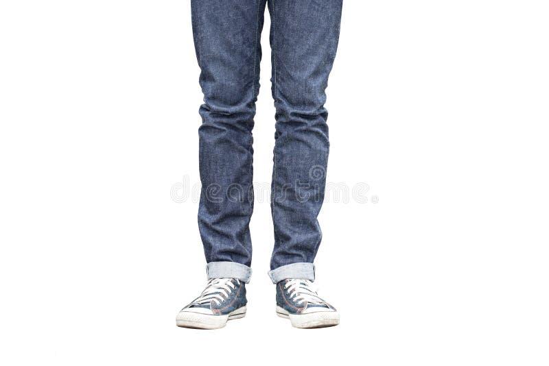 Jeans diritti adatti della gamba del Regular fotografia stock
