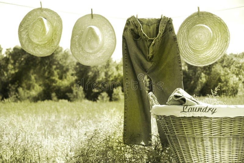 Jeans en strohoeden op drooglijn stock afbeeldingen
