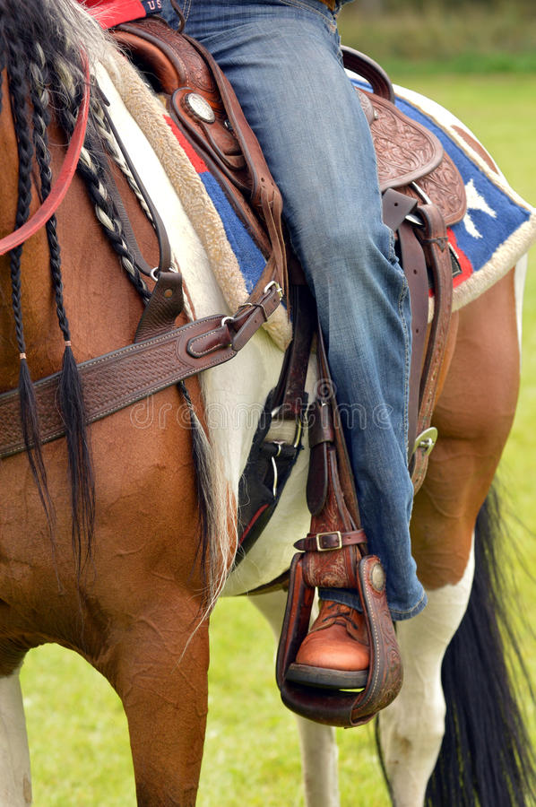 Jeans and horse royalty free stock photo