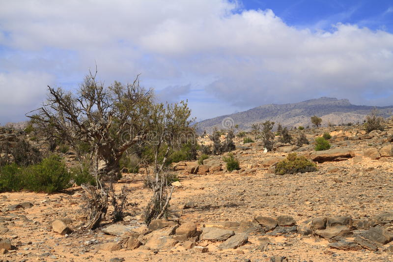 Jebel Shams stock photography