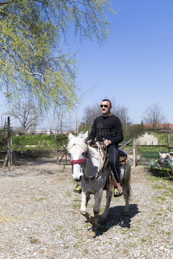 Jechać konia w westernu stylu zdjęcia royalty free