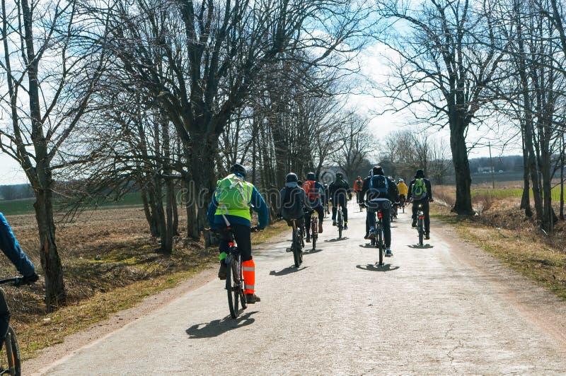 Jechać na rowerze przejażdżkę w wczesnej wiośnie, grupa cyklistów kochankowie w wiosna lesie fotografia royalty free