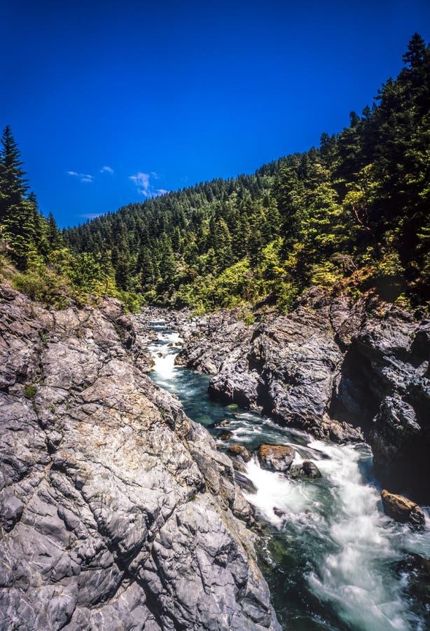 Jedediah Smith Redwoods State Park stock foto