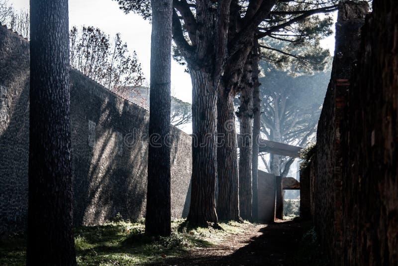 Jeden ścieżki Pompeii zdjęcia stock