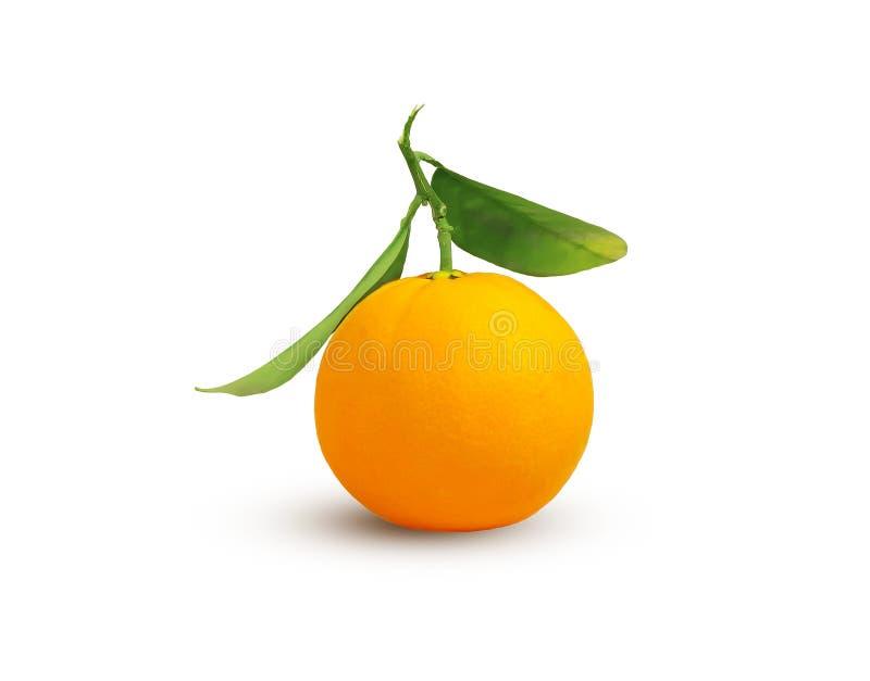 """Jeden Å›wieża unpeeled pomaraÅ""""czowa cytrus owoc z zieleniÄ… opuszcza na trzonie odizolowywajÄ…cym na biaÅ'ym tle zdjęcia royalty free"""