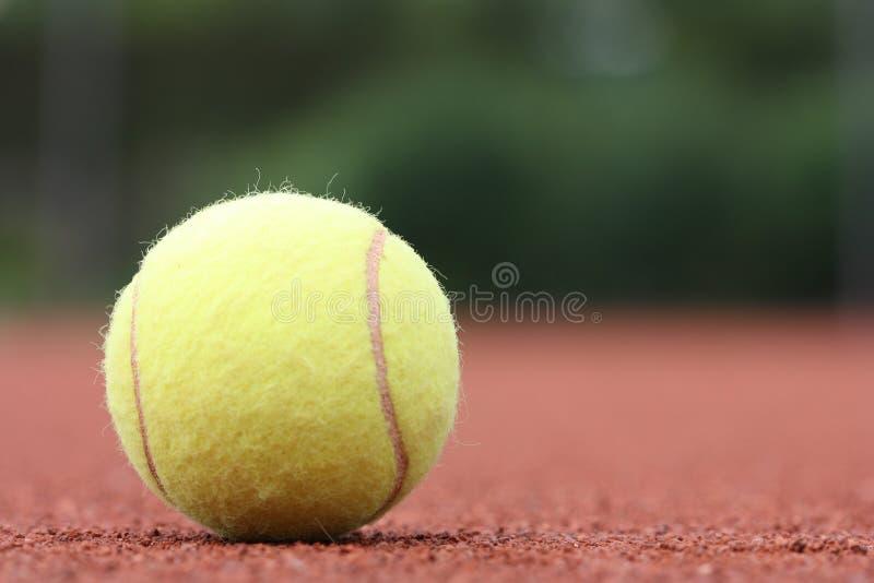 Jeden żółta tenisowa piłka fotografia royalty free