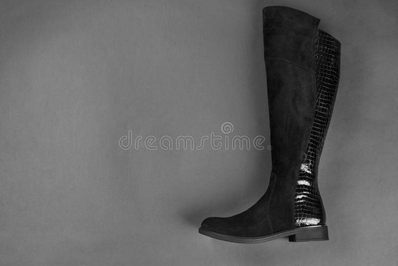 Jeden żeński but fotografia stock