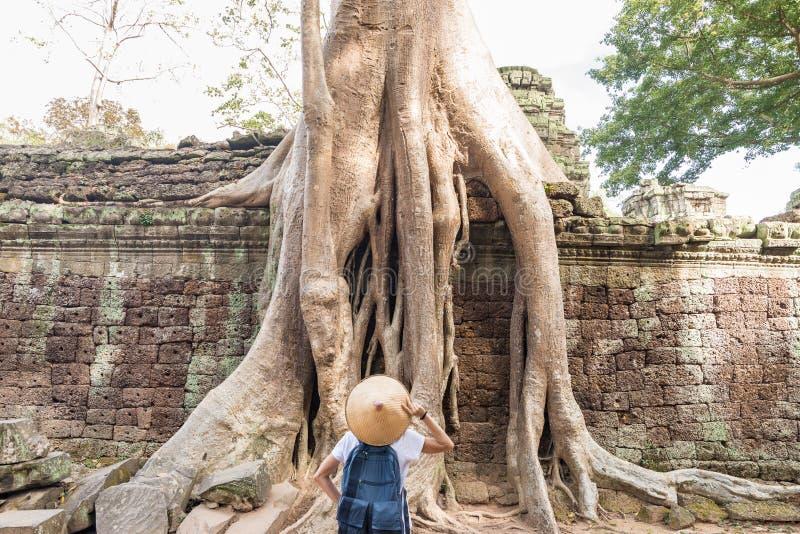 Jeden Angkor turystyczne odwiedza ruiny wśród dżungli, Angkor Wat świątynny kompleks, podróży miejsce przeznaczenia Kambodża Kobi fotografia stock