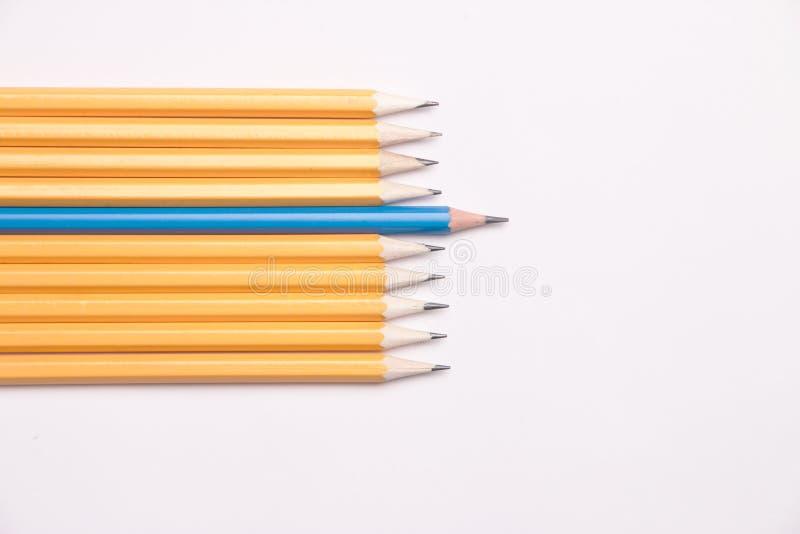 Jeden błękitny ołówek wśród kilka pomarańczowych ołówków na białym tle obrazy royalty free