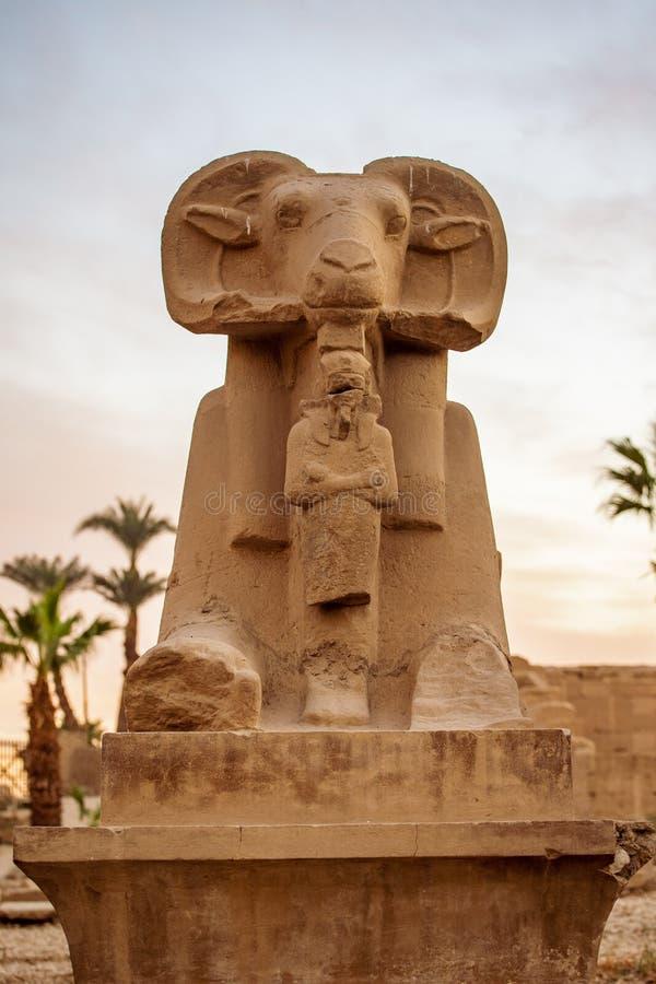 Jeden baran przewodził statuy przed Karnak Świątynnym kompleksem lub Karnak w Egipt, Afryka zdjęcia royalty free