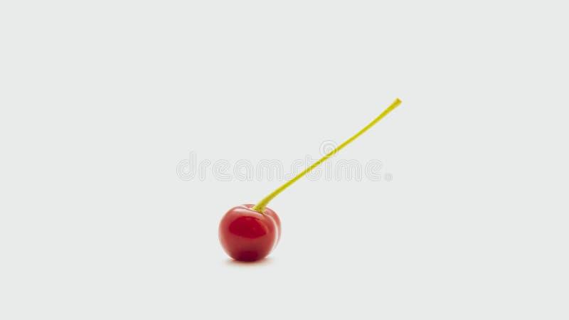 Jeden czerwona wiśnia z sprig odizolowywającym na białym tle obraz stock