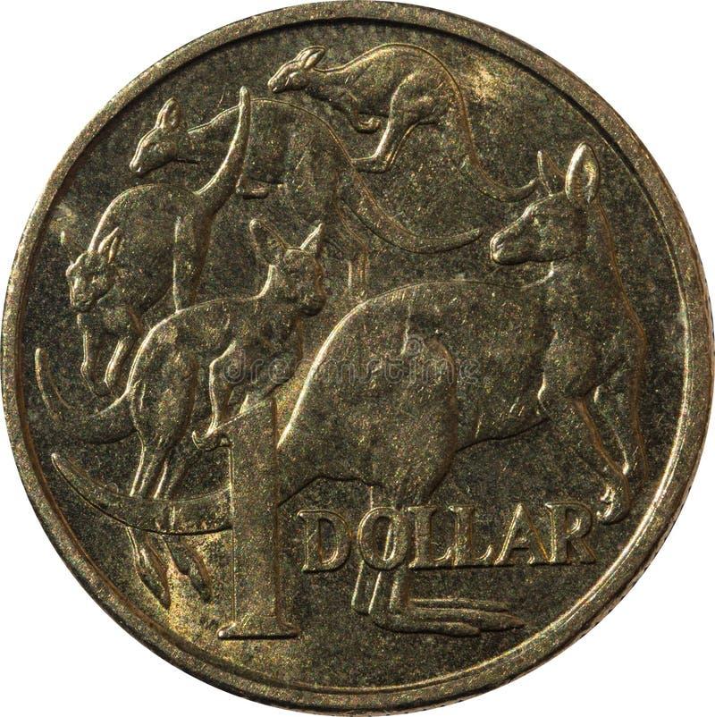 Jeden dolarowy Australijski miedzianej monety kangur obrazy royalty free