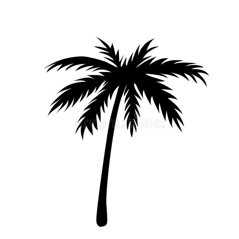 Jeden drzewko palmowe kontur ilustracja wektor