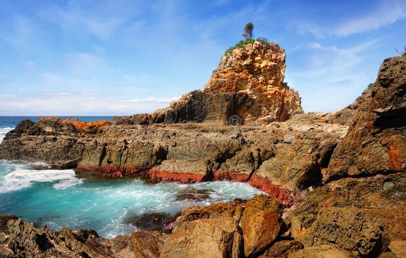 Jeden drzewo Rockowy, Australia obrazy stock