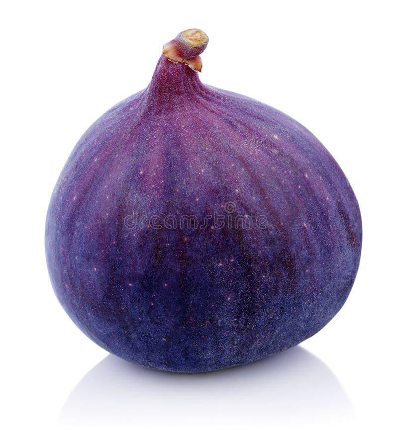 Jeden figi owoc na bielu obrazy stock
