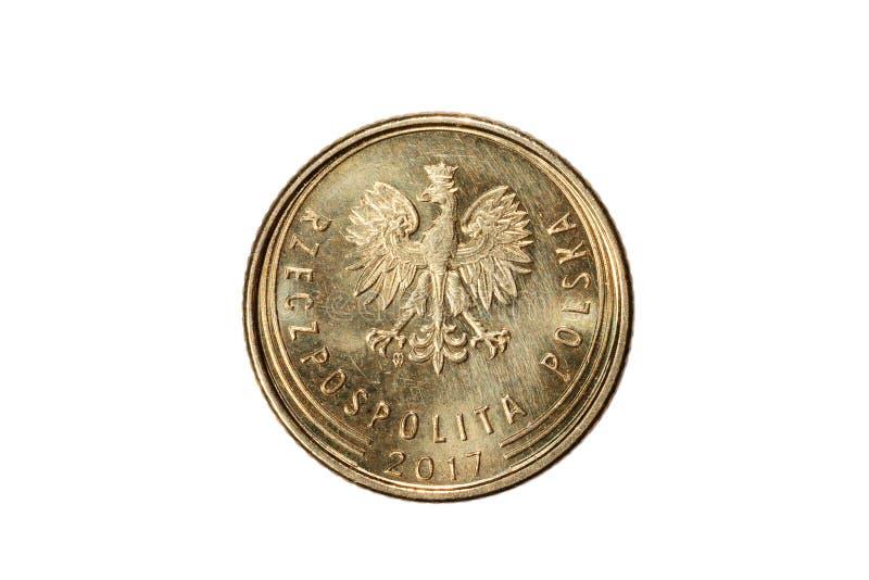 Jeden groszy polerujący złoty Waluta Polska Makro- fotografia moneta Polska przedstawia połysk groszy monetę fotografia stock