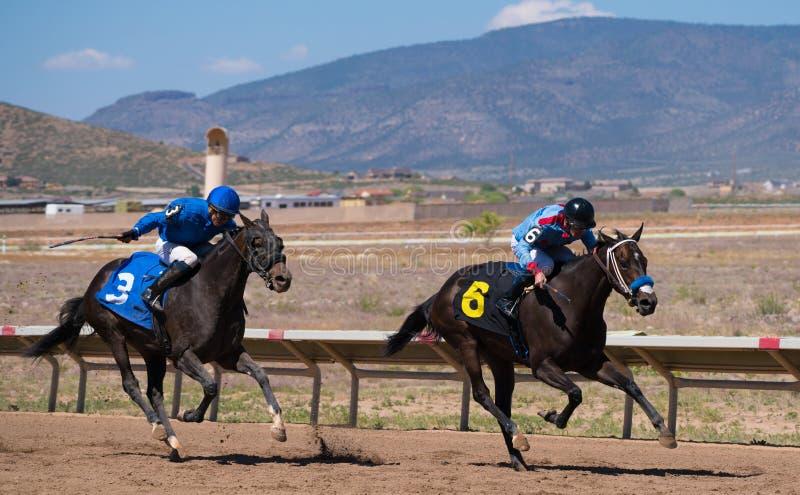 Jeden koń wyścigowy ciągnie naprzeciw inny na pustynnym racecourse zdjęcia royalty free
