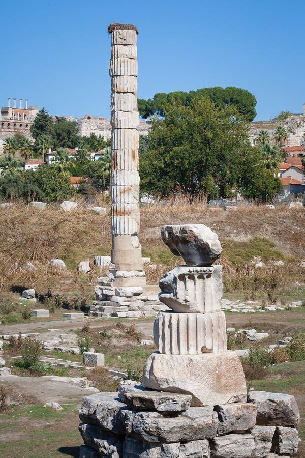 Download Jeden Kolumna świątynia Artemis Przy Ephesus Zdjęcie Stock - Obraz złożonej z ephesus, antyczny: 53784092
