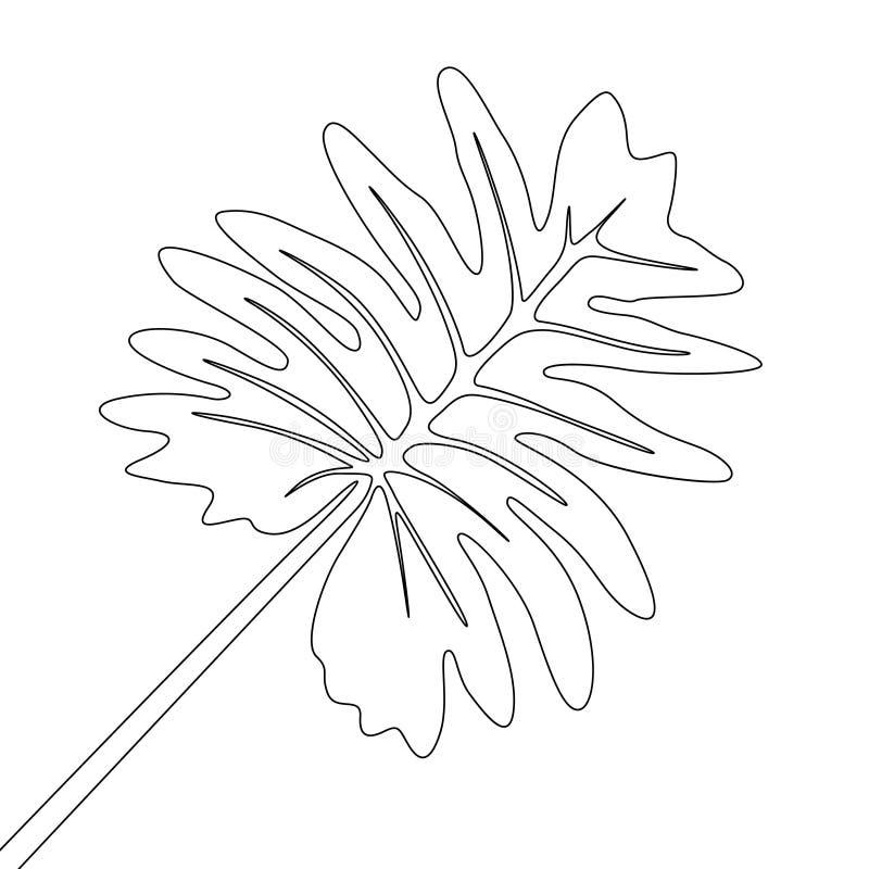 Jeden kreskowego rysunku tropikalna flora Ci?g?ej linii egzotyczna tropikalna ro?lina ilustracji