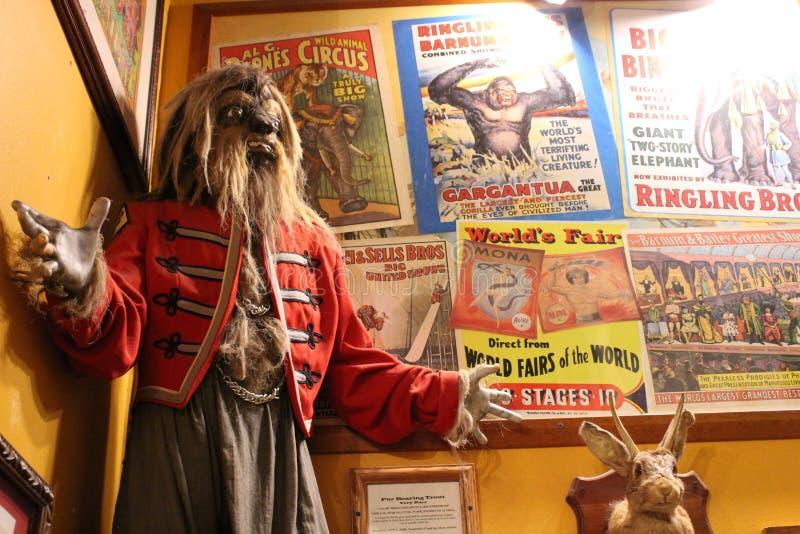 Jeden mnodzy pokazy wśrodku popularnego przyciągania, muzeum Dziwny, Austin, Teksas, 2018 zdjęcia royalty free