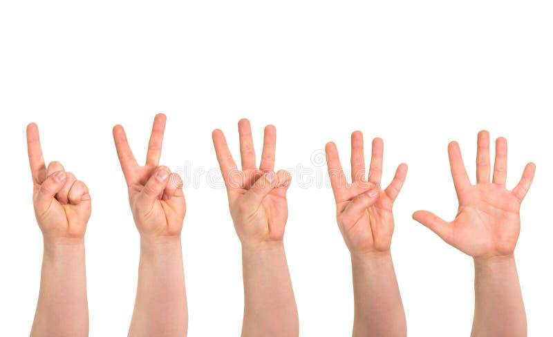 Jeden, pięć palców liczą ręka gest odizolowywającego fotografia royalty free