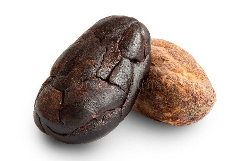 Jeden piec obranej i unpeeled jeden kakaowej fasoli na bielu obraz royalty free