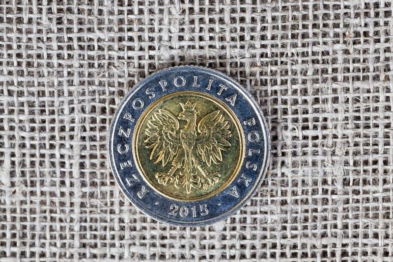 Jeden połysk moneta zdjęcia royalty free