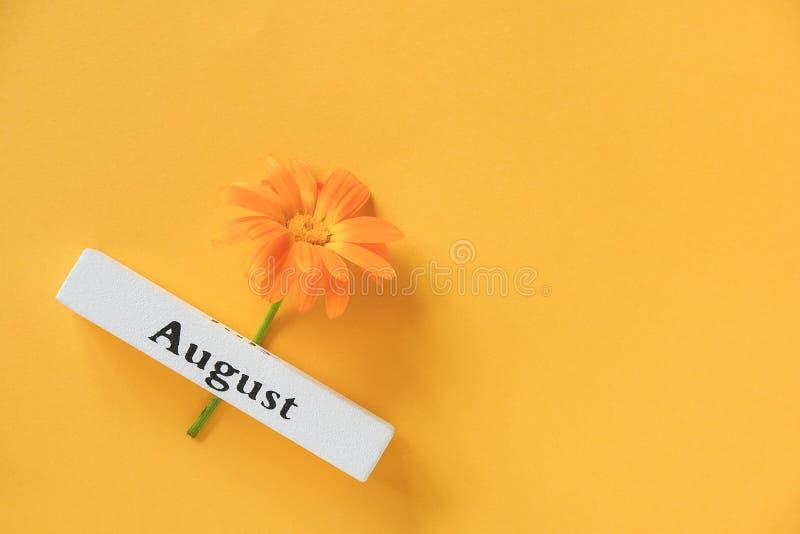 Jeden pomarańczowy kwiat kalendula i kalendarzowy letni miesiąc sierpień żółte tło Widok z góry Kopiuj spację Płaska warstwa Styl obraz stock