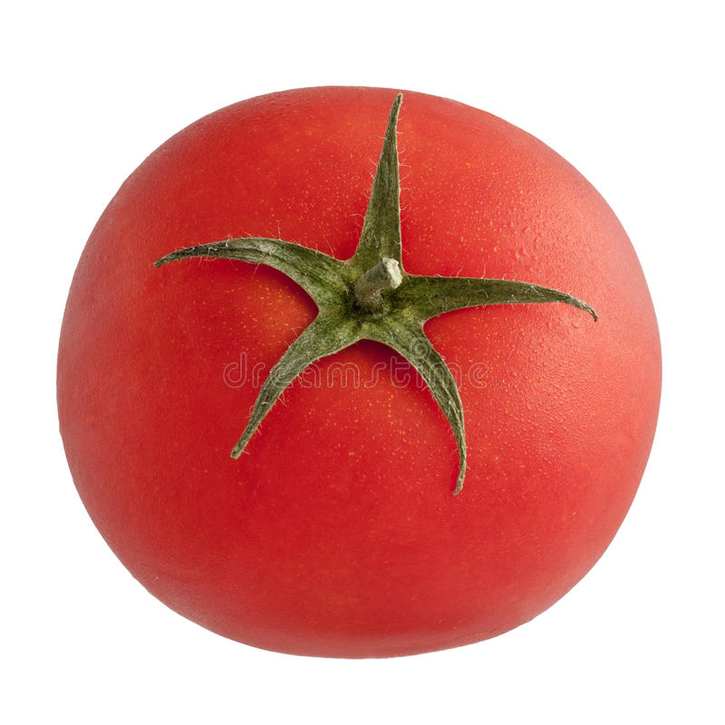 jeden pomidor obrazy royalty free