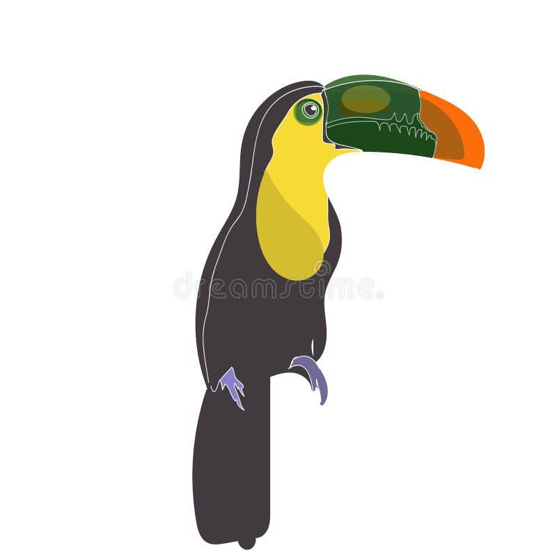 Jeden ptak z Dużym belfrem, pieprzojada ptasi obsiadanie z białym tłem Wektorowa obraz ilustracja na papierze, zwierzęcy życie Lo ilustracji