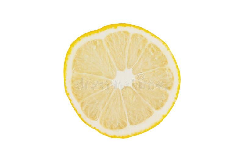 Jeden round kawałek świeża dojrzała pokrojona cytryna odizolowywająca na białym tle Odgórny widok fotografia royalty free