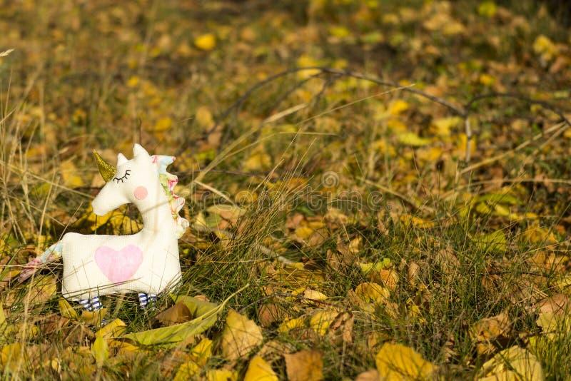 Jeden tkaniny jednorożec zabawkarscy stojaki na żółtym ulistnieniu i trawie, pasają Zako?czenie zamazuj?cy t?o Tam? jest miejsce  fotografia stock