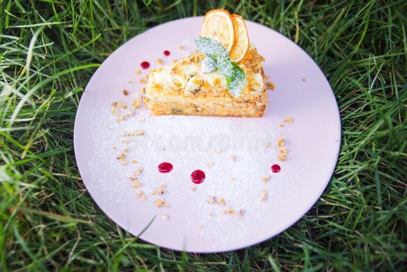 Jeden tort z mennicą fotografia royalty free