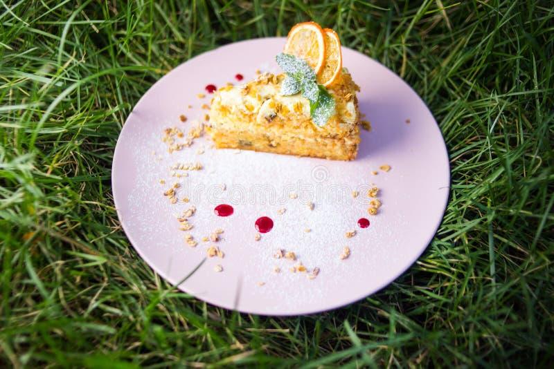 Jeden tort z mennicą fotografia stock