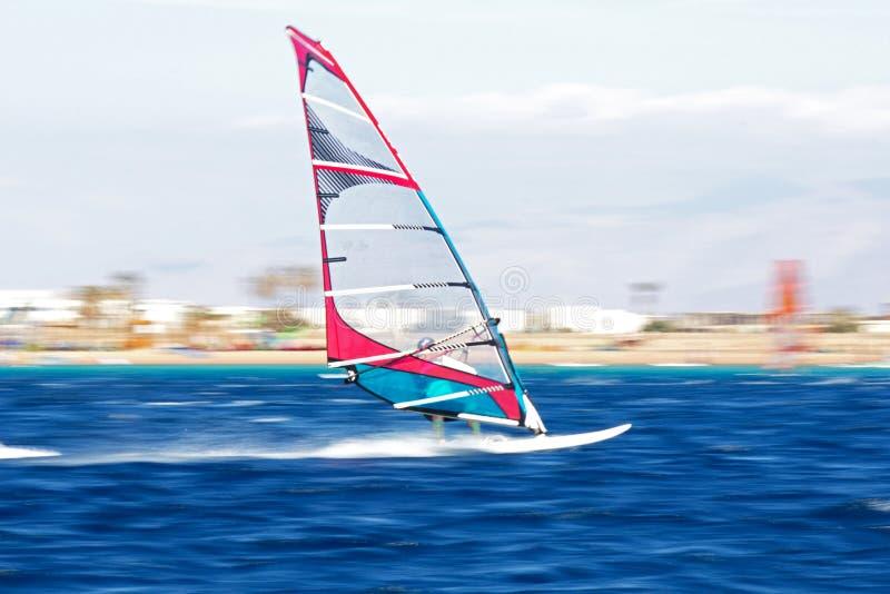 Jeden windsurfers w ruchu obrazy stock