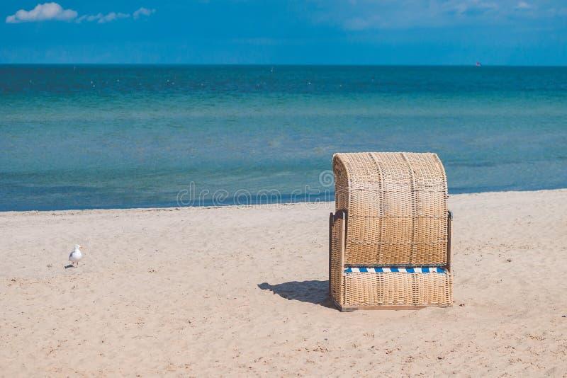Jeden zadaszający krzesło na pustej piaskowatej plaży w Travemunde Jeden osamotniony seagull beside Niemcy obraz royalty free