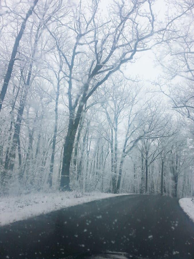 Jeden zimny zima ranek obrazy royalty free
