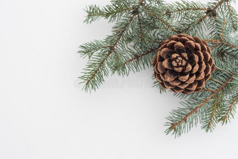 Jedlinowa gałąź z sosna rożkiem na białym śniegu abstrakcjonistycznych gwiazdkę tła dekoracji projektu ciemnej czerwieni wzoru st zdjęcia royalty free