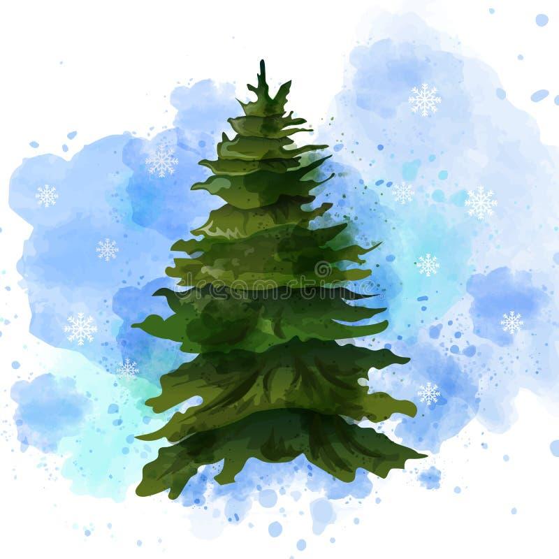 Jedlinowego drzewa Wektorowa akwarela odizolowywająca na bielu Szablonu układu zieleni choinka bez dekoracji ilustracji