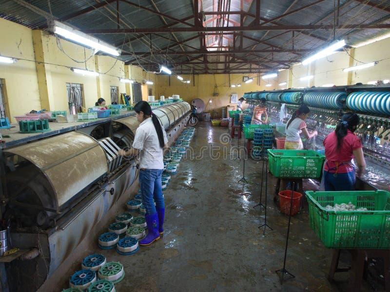Jedwabnicza produkcji fabryka w lokalnej wiosce w Da Lat mieście Tra zdjęcia stock