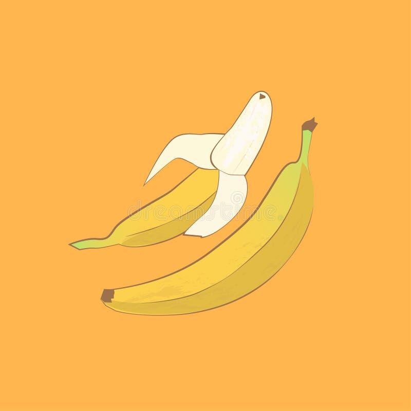 Jedzenie   Dwa żółtego banana royalty ilustracja