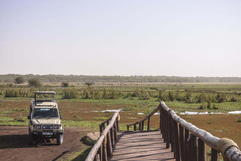 Jeep auf Safari lizenzfreie stockbilder