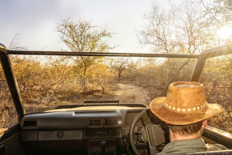 Jeep d'entraînement de jeu de direction de garde forestière photographie stock