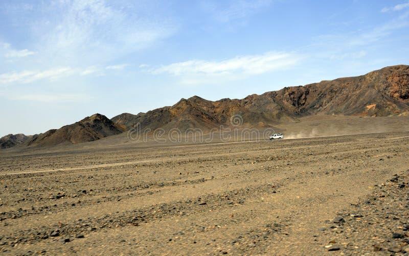 Jeep de safari dans le désert images libres de droits