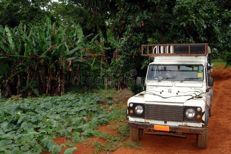 Jeep di safari sulla strada non asfaltata immagini stock