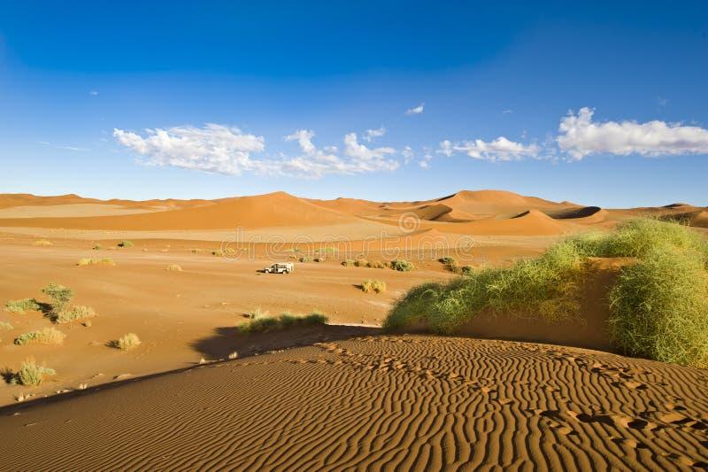 Jeep en las dunas de Sosussvlei fotos de archivo libres de regalías