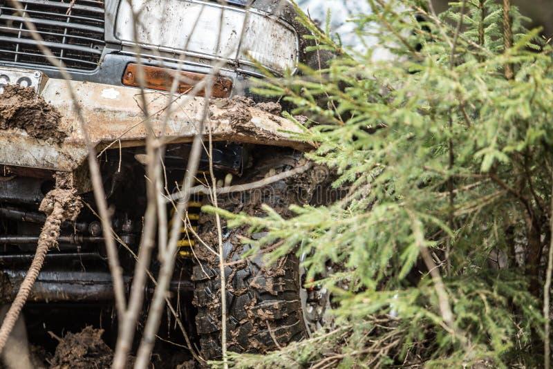 Jeep in foresta fotografie stock