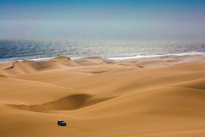 Jeep mágico - safari foto de archivo